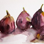 fig season - Beverly Brown watercolor